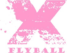 X flyball